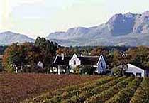 Vindalarna i Kap